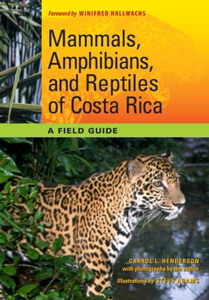 Mammals,  Amphibians,  and Reptiles of Costa Rica A Field Guide