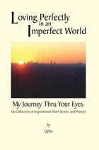 Loving Perfectly in an Imperfect World - My Journey Thru Your Eyes by Qzac