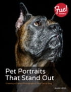 Pet Portraits That Stand Out: Creating a Classic Photograph of Your Cat or Dog by Alan Hess