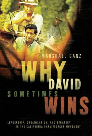 Why David Sometimes Wins Leadership,  Organization,  and Strategy in the California Farm Worker Movement