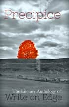 Precipice: The Literary Anthology of Write on Edge ebook by
