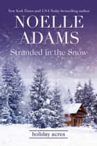 Stranded in the Snow - Holiday Acres, #2 ebook by Noelle Adams