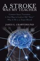 A Stroke Was My Teacher ebook by James Crawford