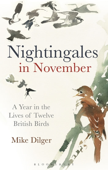Nightingales in November - A Year in the Lives of Twelve British Birds 電子書 by Mike Dilger