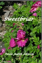 Sweetbriar ebook by Paula Judith Johnson