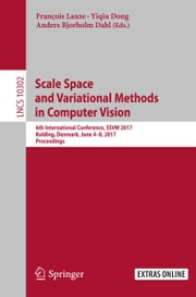 Scale Space and Variational Methods in Computer Vision - 6th International Conference, SSVM 2017, Kolding, Denmark, June 4-8, 2017, Proceedings ebook by