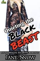 Quieting the Black Beast ebook by Jane Snow
