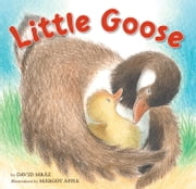 Little Goose ebook by David Mraz,Margot Apple