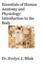 Essentials of Human Anatomy and Physiology: Introduction to the Body ebook by Dr. Evelyn J Biluk