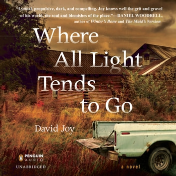 Where All Light Tends to Go audiobook by David Joy