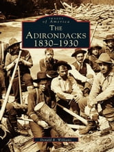 Adirondacks, The - 1830-1930 ebook by Donald R. Williams