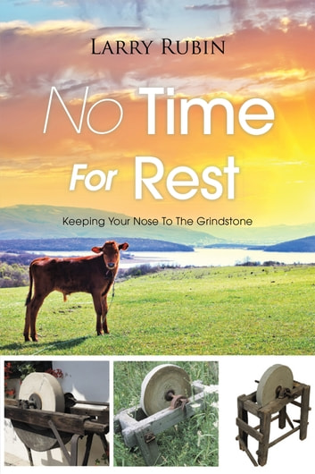 No Time for Rest - Keeping Your Nose to the Grindstone ebook by Larry Rubin