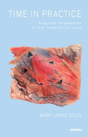 Time in Practice - Analytical Perspectives on the Times of Our Lives ebook by Mary Lynne Ellis