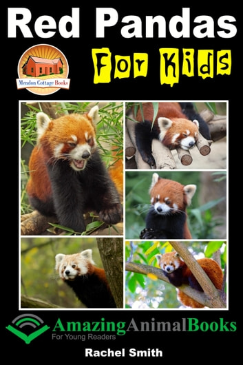 Red Pandas For Kids ebook by Rachel Smith