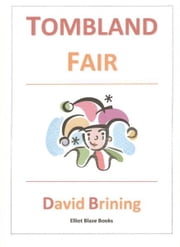 Tombland Fair ebook by David Brining