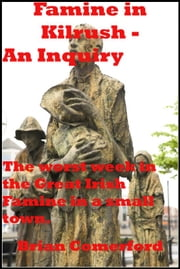Famine in Kilrush: An Inquiry ebook by Brian Comerford