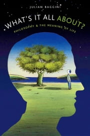 Whats It All About?: Philosophy and the Meaning of Life ebook by Julian Baggini