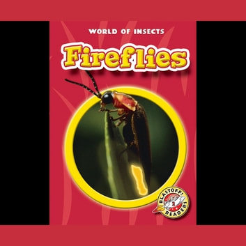 Fireflies audiobook by Emily K. Green