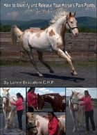 How to Identify and Release Your Horse's Pain Points: An Owner's Guide ebook by Lorrie Bracaloni