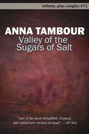 Valley of the Sugars of Salt ebook by Anna Tambour
