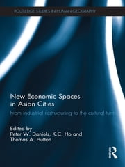 New Economic Spaces in Asian Cities - From Industrial Restructuring to the Cultural Turn ebook by