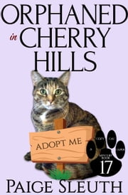 Orphaned in Cherry Hills ebook by Paige Sleuth