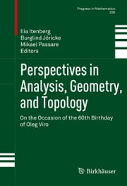 Perspectives in Analysis, Geometry, and Topology - On the Occasion of the 60th Birthday of Oleg Viro ebook by Ilia Itenberg,Burglind Jöricke,Mikael Passare