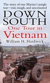 Down South - One Tour in Vietnam ebook by William Hardwick