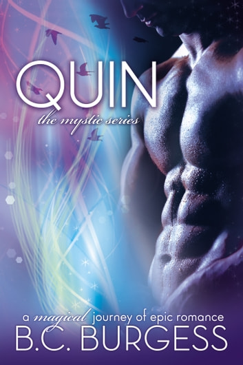 Quin - Mystic Series Stories ebook by B.C. Burgess