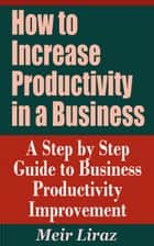 How to Increase Productivity in a Business: A Step by Step Guide to Business Productivity Improvement ebook by Meir Liraz