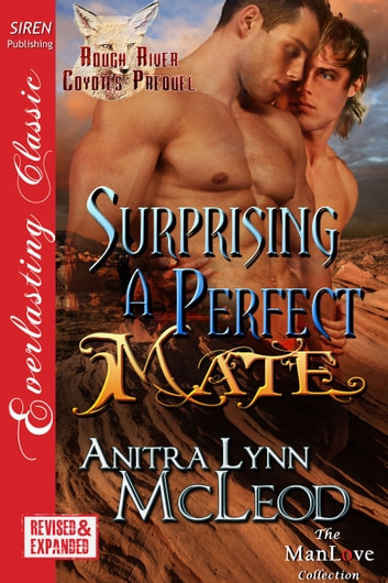 Surprising a Perfect Mate ebook by Anitra Lynn McLeod