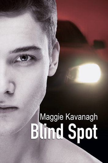 Blind Spot ebook by Maggie Kavanagh