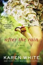 After the Rain ebook by Karen White