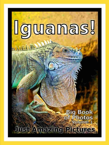 Just Iguana Lizard Photos! Big Book of Photographs & Pictures of Iguana Lizards, Vol. 1 ebook by Big Book of Photos