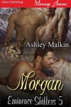 Morgan ebook by Ashley Malkin