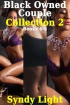 Black Owned Couple Collection 2, Books 4-6 - Black Owned Couple ebook by Syndy Light