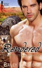 Rendered ebook by Bailey Bradford