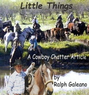 Little Things ebook by Ralph Galeano