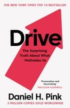 Drive - The Surprising Truth About What Motivates Us ebook by Daniel H. Pink