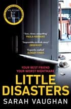 Little Disasters - the compelling and thought-provoking new novel from the author of the Sunday Times bestseller Anatomy of a Scandal ebook by Sarah Vaughan