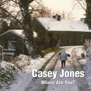 Casey Jones - Where Are You? A Winter Tale of a Lost Toy ebook by Pat Preston