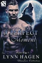 A Perfect Moment ebook by Lynn Hagen