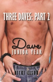 Three Daves, Book 2 - Dave, Junior Year ebook by Nicki Elson