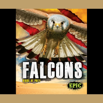 Falcons audiobook by Nathan Sommer