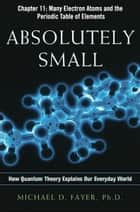 Absolutely Small, Chapter 11 ebook by Michael D. FAYER