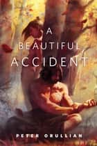 A Beautiful Accident - A Tor.Com Original ebook by Peter Orullian