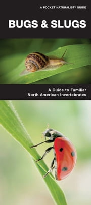 Bugs & Slugs - A Folding Pocket Guide to Familiar North American Invertebrates ebook by James Kavanagh,Raymond Leung