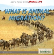 What Is Animal Migration? ebook by Therese Shea,Shalini Saxena