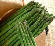 A Crash Course on How to Grow Asparagus ebook by Linda Cooper