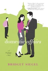 Domestic Affairs - A Novel ebook by Bridget Siegel